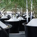 micro-growers-indoor-irrigation